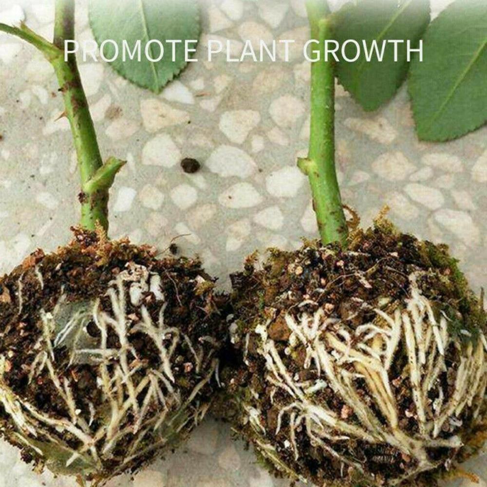 6 pcs/10 Pcs Plant Rooting Equipment High Pressure Propagation Ball Growing Box Breeding Case For Garden Graft Box Sapling